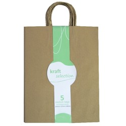 Medium Kraft Gift Bags - 5 Pack Brown