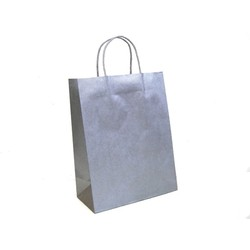 Kraft Bags - Medium - Metallic Silver