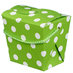 Noodle Box - 4pc - Green Dots