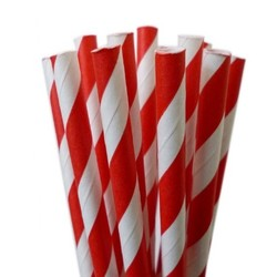 Paper Straws - 20pcs - Red Stripes