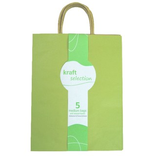 Medium Kraft Gift Bags - 5 Pack Green