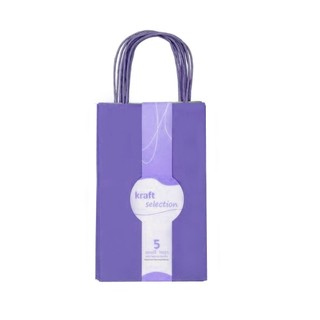 Small Kraft Gift Bags - 5 Pack Purple