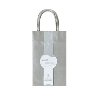 Small Kraft Gift Bags - 5 Pack Metallic Silver