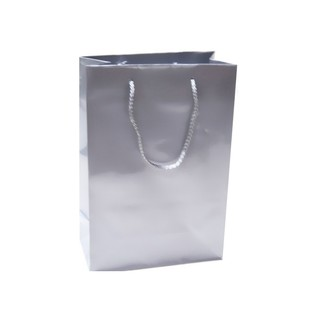 Gift Carry Bags - Glossy Silver - Medium/Large