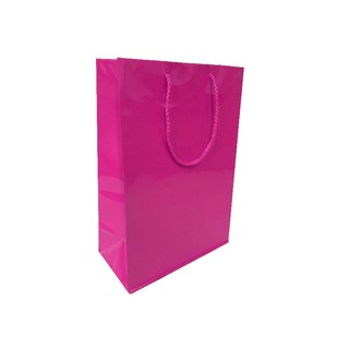 Gift Carry Bags - Glossy Hot Pink - Medium/Large