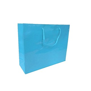 Gift Carry Bags - Glossy Turquoise - Boutique