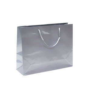 Gift Carry Bags - Glossy Silver - Boutique