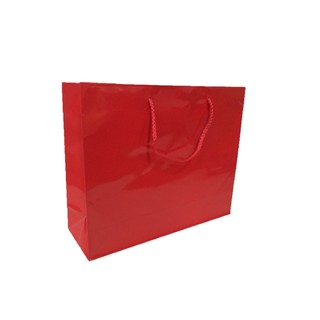 Gift Carry Bags - Glossy Red - Boutique